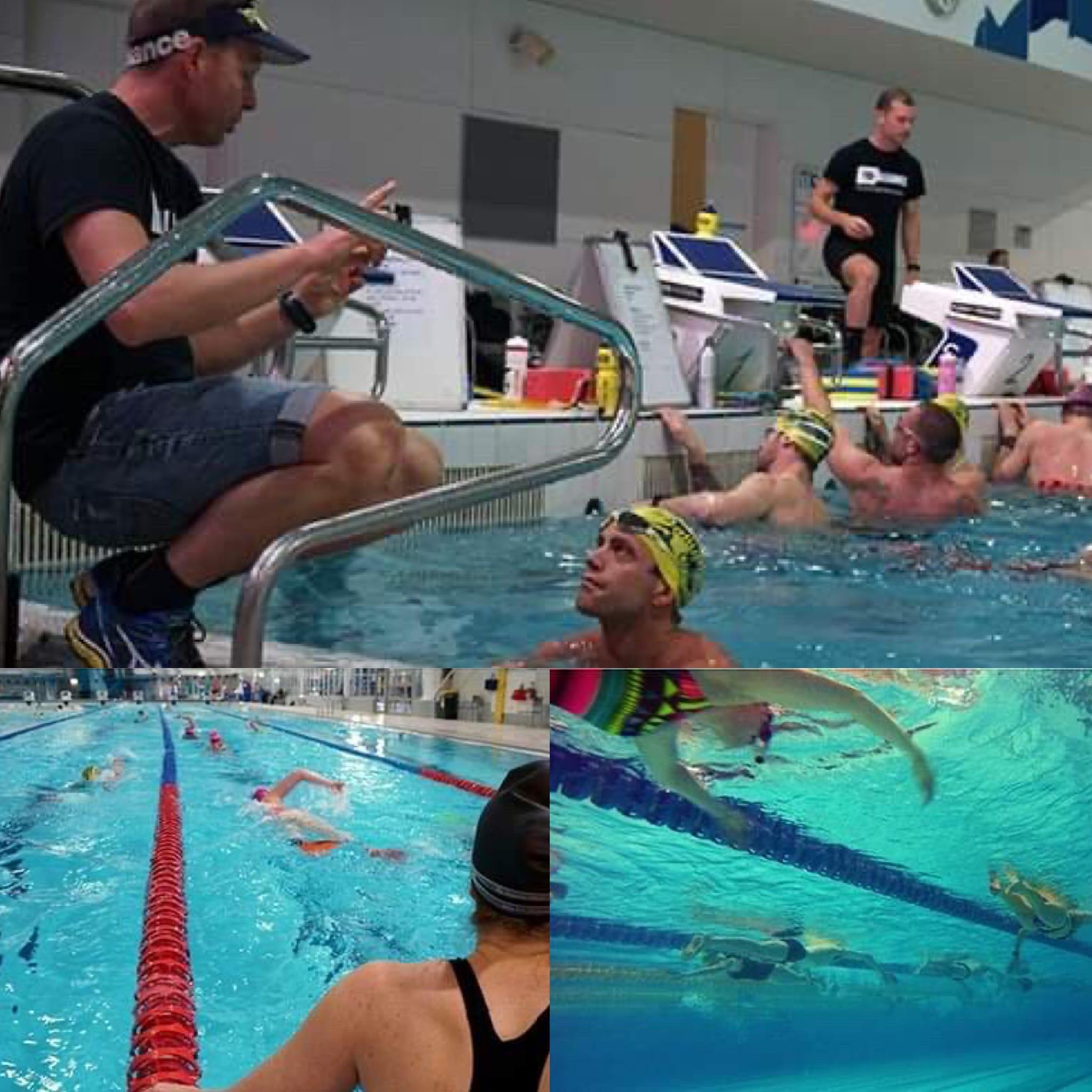 Tri Alliance Swim Clinic